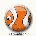 Button Clownfisch